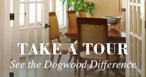 Dogwood Forest Tour