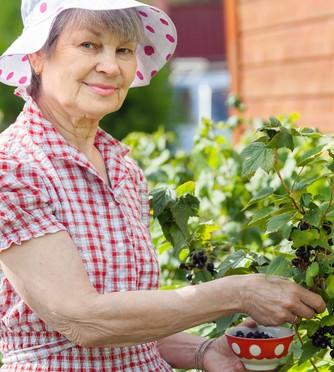 gardenwoman