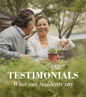 Dogwood Forest Testimonials
