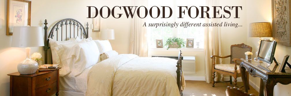 Dogwood Forest room