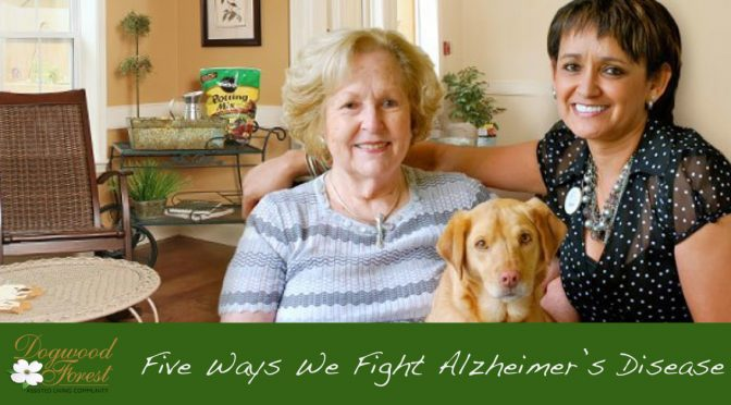 dogwood-forest-five-ways-we-fight-alzheimers-graphic