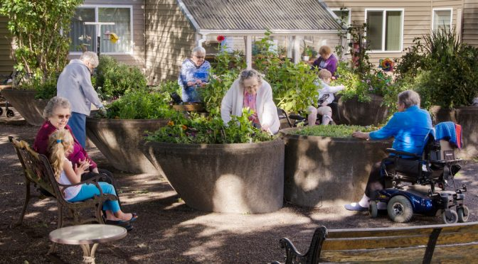Residents of an assisted living community tend their gardens in wheelchair accessible containers